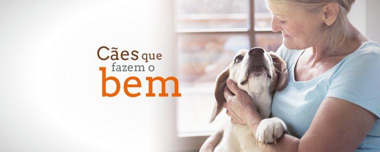 terapias com cachorros